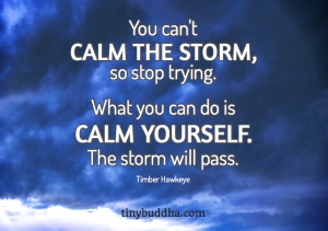 You-Cant-Calm-the-Storm